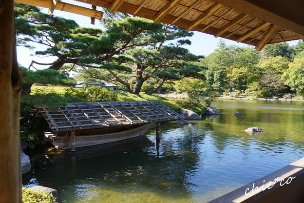 昭和記念公園-430