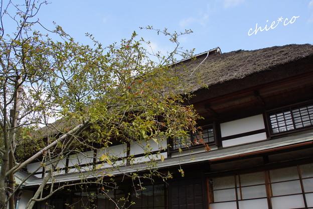鎌倉-189