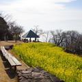 写真: 吾妻山公園-148