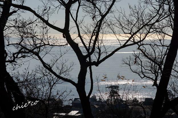 吾妻山公園-182