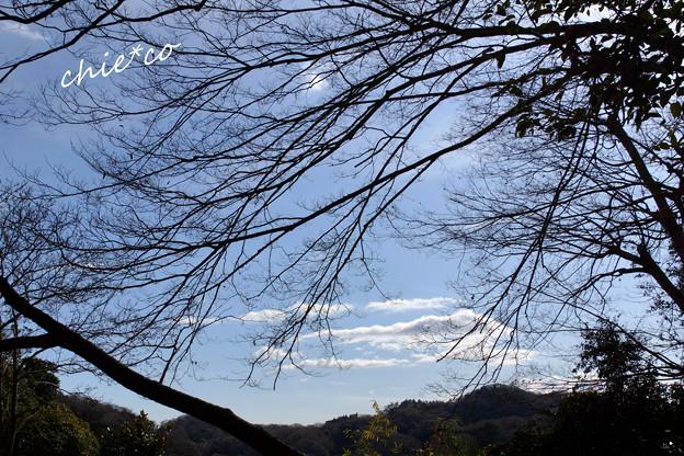 鎌倉-143