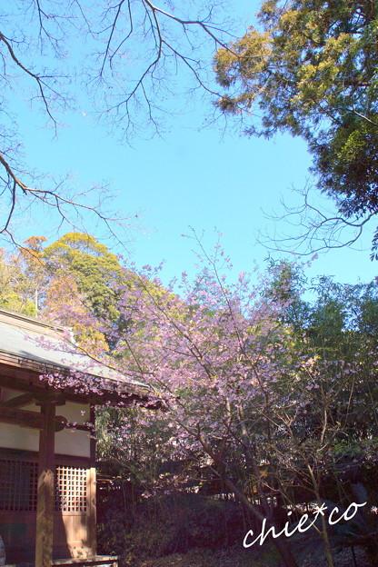 北鎌倉-364