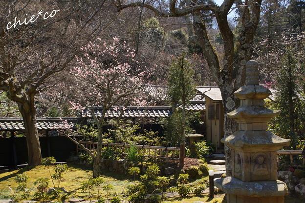 北鎌倉-427
