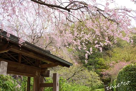鎌倉-665