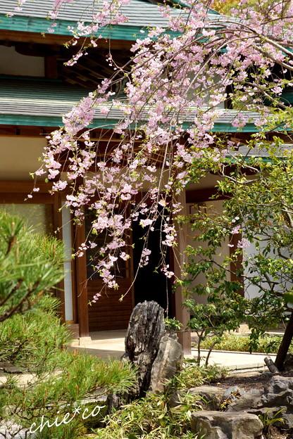 鎌倉-821