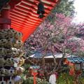 写真: 鎌倉-214