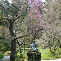 写真: 鎌倉-437