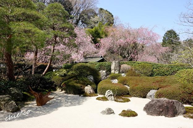 鎌倉-482