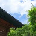 写真: 鎌倉-104