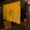 Photos: 幻の300日コーチン
