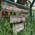 Photos: フアランポーン駅のミニ鉄道図書館、タイ国鉄