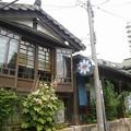写真: P1060240