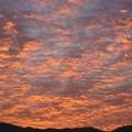 写真: 朝焼け空?