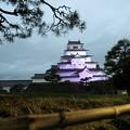 写真: 会津 鶴ヶ城ライトアップ