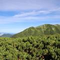 Photos: 双六岳稜線の向こうに見えるのは日本海