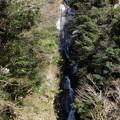 写真: 早春の流れ(常清滝)