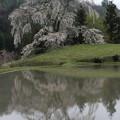 Photos: 里山に咲く(与一野の枝垂れ桜)