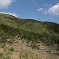 写真: 新緑の山歩き