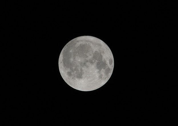 Photos: 10月の満月