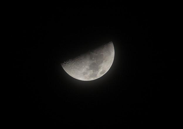 Photos: 冬の月夜