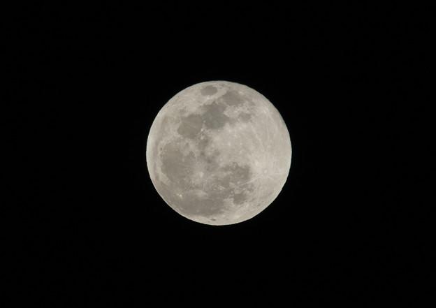 今日(19年1月21日)の満月