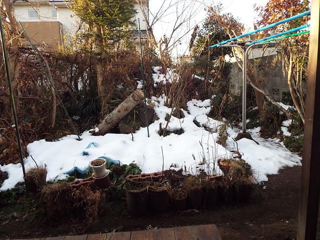庭の残雪1801290001
