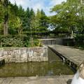 DSCN7975イタリア式庭園