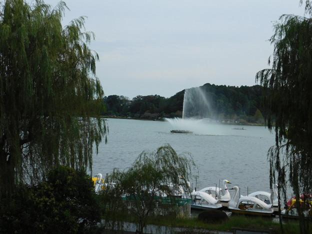 DSCN0073千波湖噴水