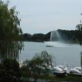 写真: DSCN0073千波湖噴水