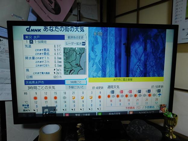 最低気温4.6度DSCN0682