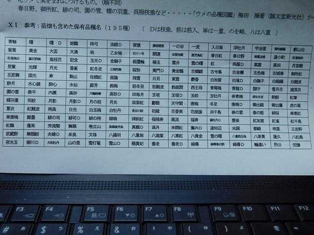DSCN3018資料保有品種名