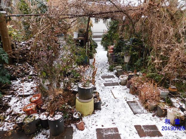初雪DSCN5529mj