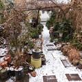 Photos: 初雪DSCN5529mj