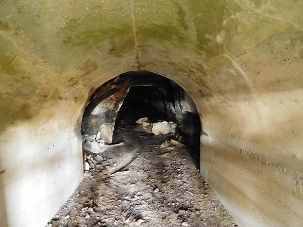 南崖の洞窟DSCN5946