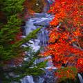 Photos: 龍頭の滝(右側です)