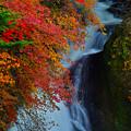 龍頭の滝(左側です)