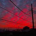 Photos: 本日の朝焼け