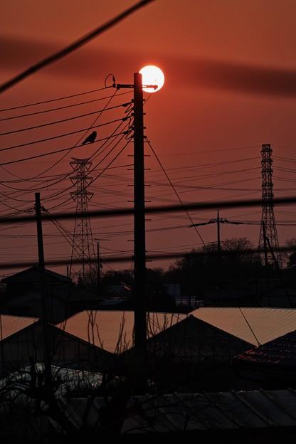 Photos: 今日の日の出は、お日様まん丸ですね~( ^ω^ )