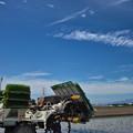 写真: 田植え日和