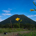 写真: ゆうすげと榛名富士!(^▽^)/