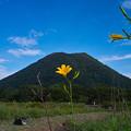 Photos: ゆうすげと榛名富士!(^▽^)/
