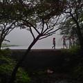 写真: 霧にむせぶ夜・・・霧の覚満淵で~す!