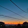 写真: 早起き鳥(撮り)!