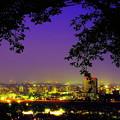 Photos: 高崎夜景