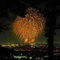 Photos: 夜空に咲く大輪の菊かな?(^^♪