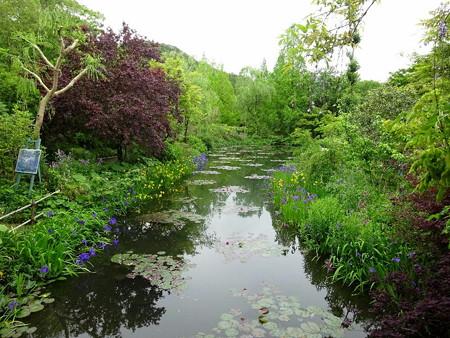 180425-03水の庭