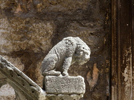 180704-17うなだれるライオン