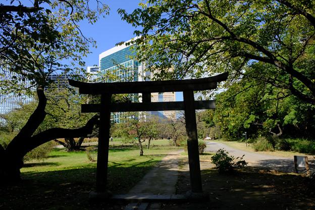 8稲生神社の鳥居
