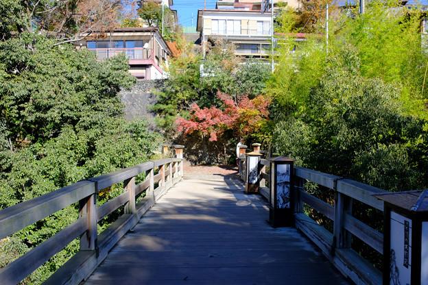 この橋が猿橋(日本三奇橋)