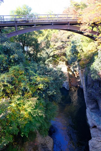 反対側の新猿橋を見上げる
